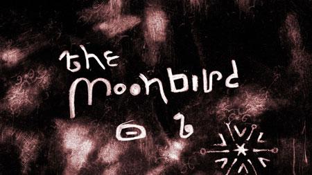 The Moon Bird