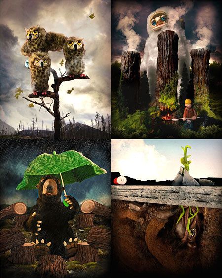 My Woodland, My Nightmare Series by Jessica Fortner