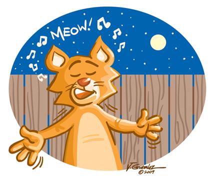 Alley Cat Blues