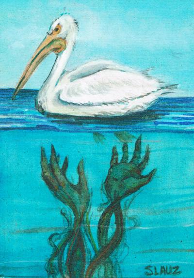 slauz_the-oil-spill-Pelican400