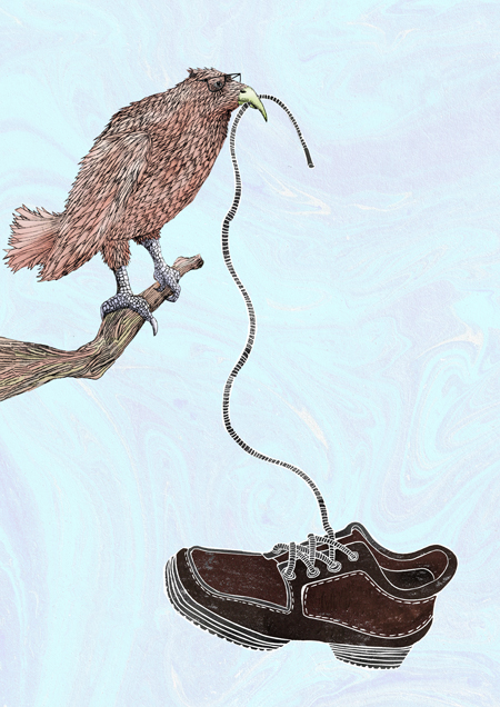bird-laces