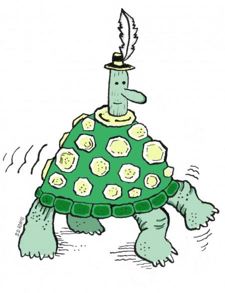 turtle-chap-final