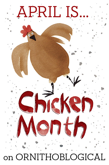 ARaff_ChickenMonth1e