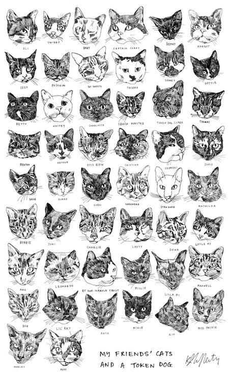 tea-towel-kavel-rafferty-cats