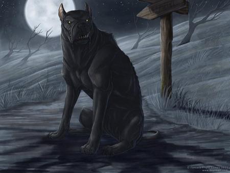 blackdog_brynnmetheney-1