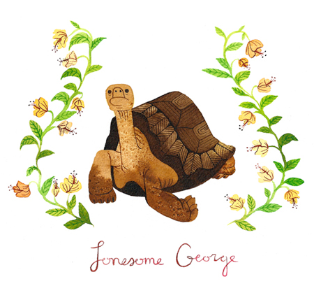 lonesome_george_small