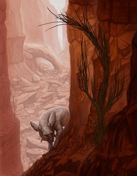 canyon_brynnmetheney-sm