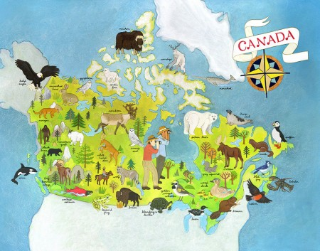 animals_of_canada_illustrated_map_art